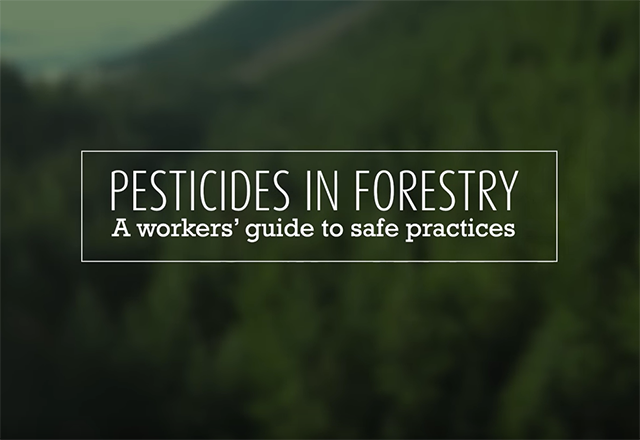 Click to play the video for Pesticides in Forestry, A Workers' Guide to Safe Practices