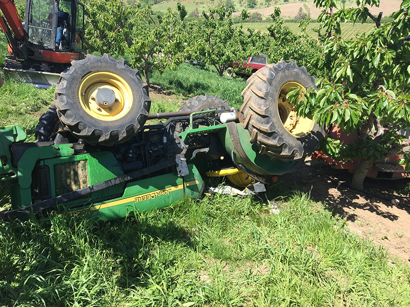 Photograph of tractor rolled over nearly upside down and up against a tree in a fruit orchard.