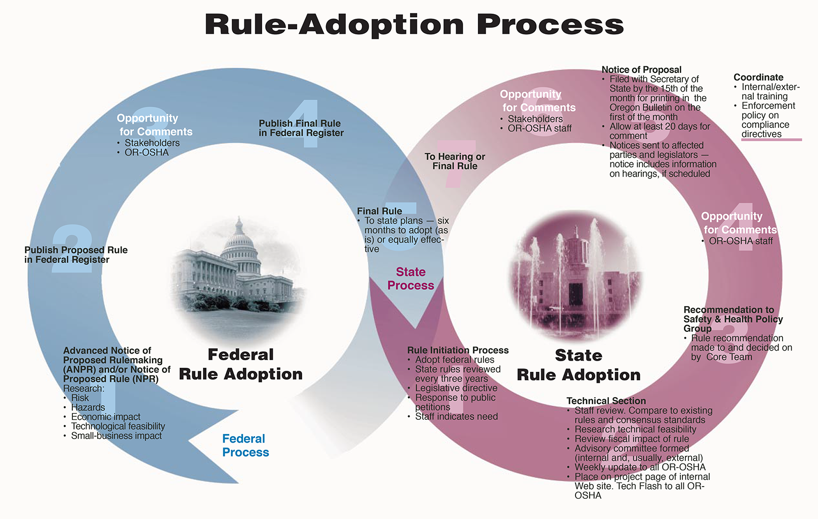 rule adoption process graphic